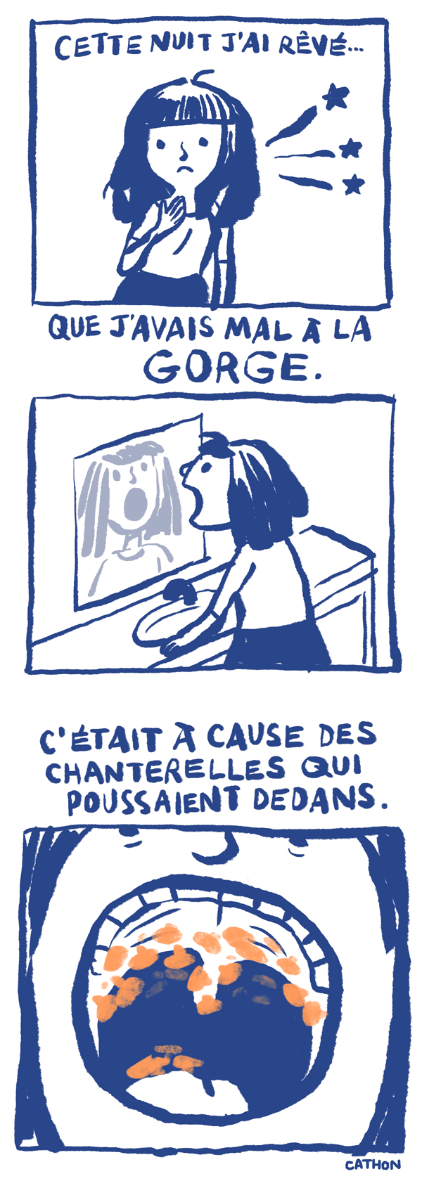 chanterelles_blog